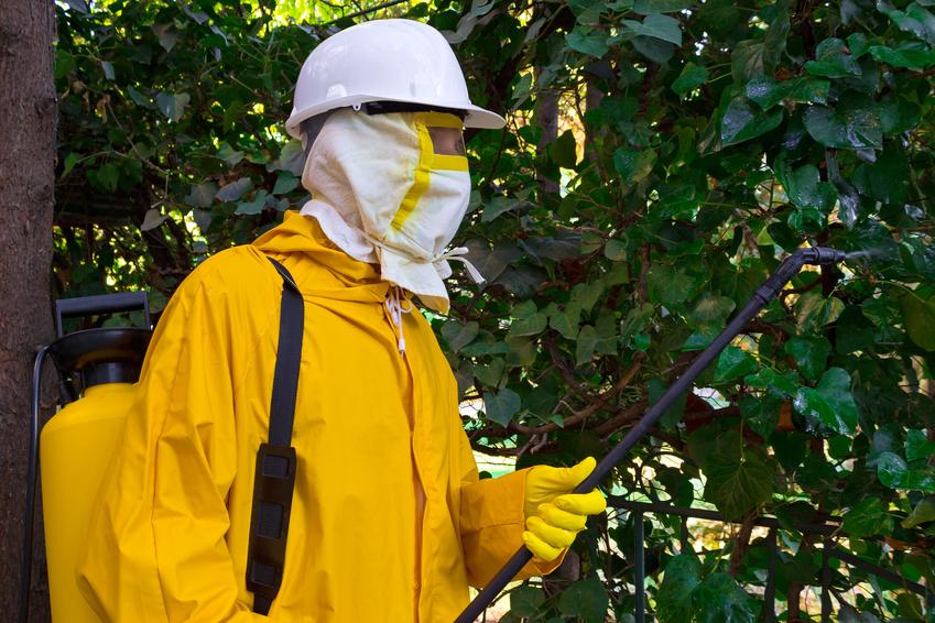 Control de plagas - productos fitosanitarios