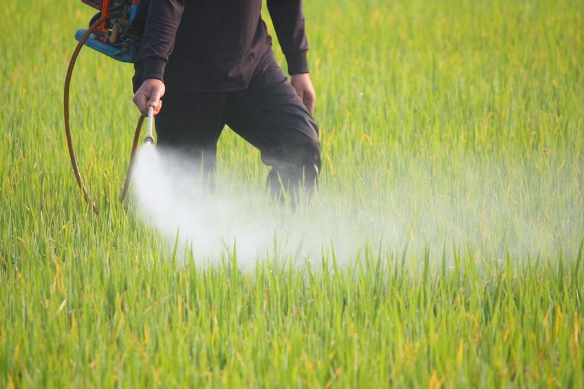 Productos fitosanitarios - Control de plagas