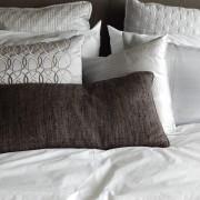 Plagas urbanas - Chinches de cama