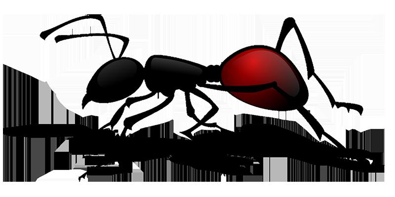 Desinsectación - I+D Control de Plagas
