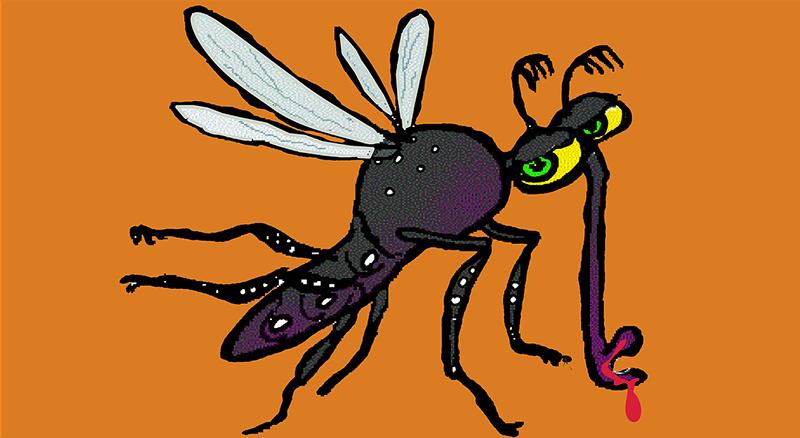Zika emergencia internacional de salud pública - ID Control de Plagas