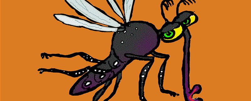 El Zika en España - ID Control de Plagas