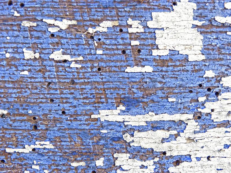 Termitas y carcoma diferencias - I+D Control de Plagas - Orificios de carcoma en madera