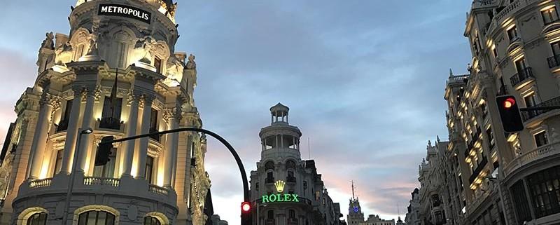 Fauna indeseada - ID Control de Plagas Urbanas en Madrid