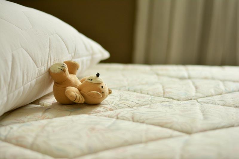 Chinches de cama en la ropa