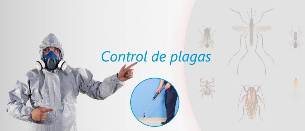 control-de-plagas-aravaca