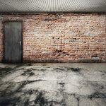 ¿Cómo eliminar las plagas de tu garaje?